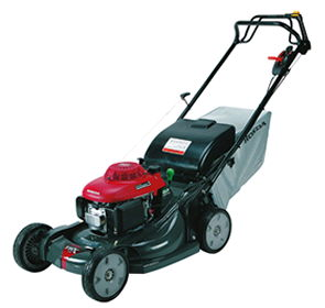 Where to find LAWN MOWER, GAS in Homer Glen