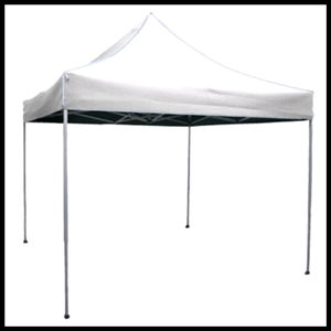 Where to find CANOPY 10  X 10  EZUP in Homer Glen